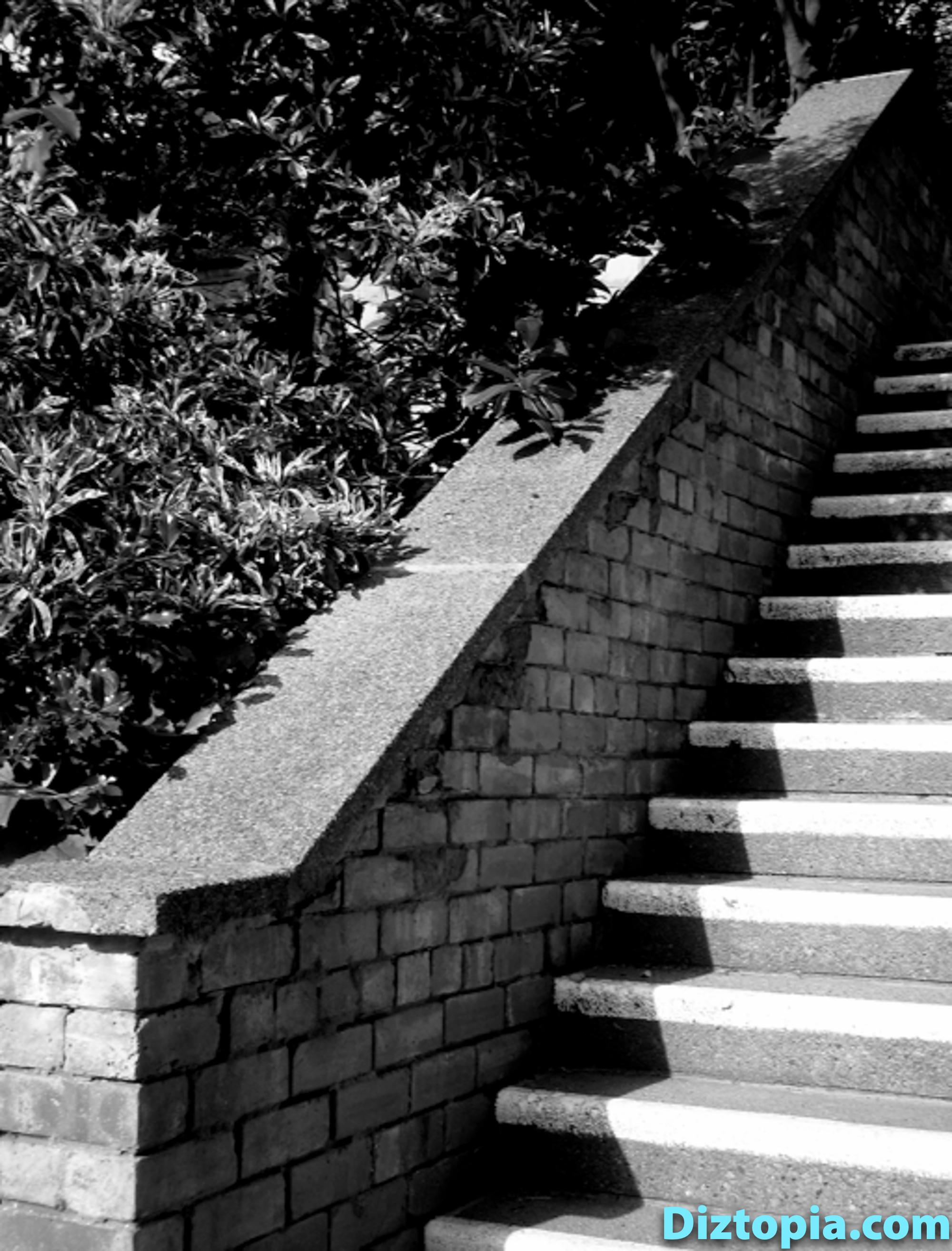 diztopia-com-dizma_dahl-photography-digicam-27
