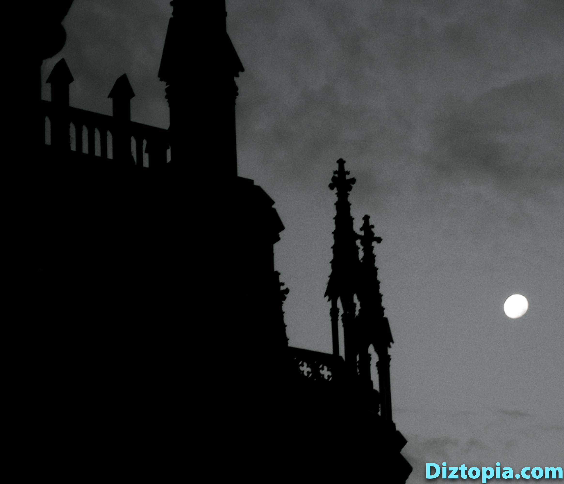 diztopia-com-dizma_dahl-photography-digicam-45