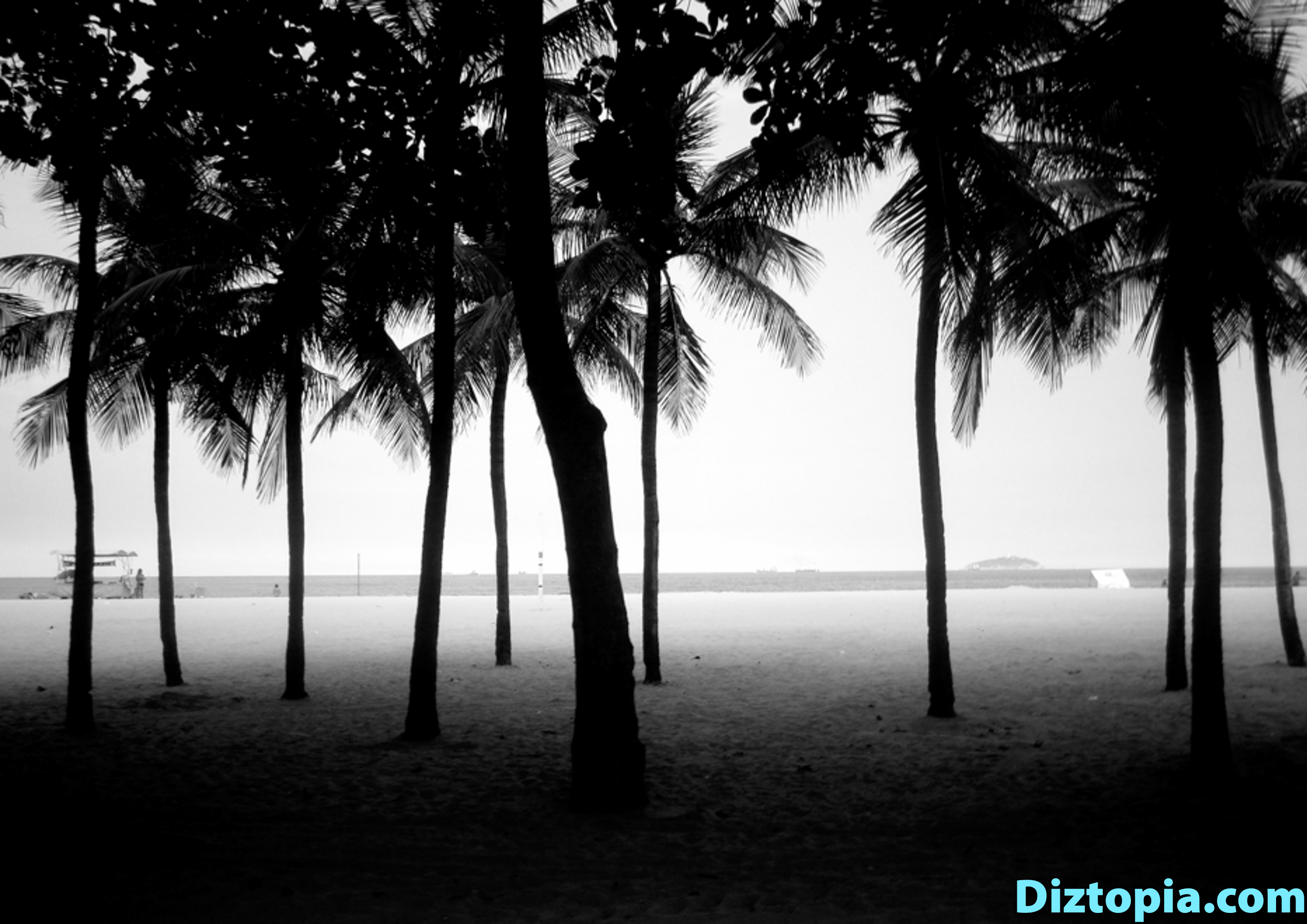 diztopia-com-dizma_dahl-photography-digicam-48